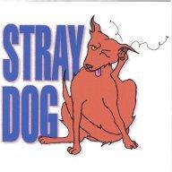 straydogger69